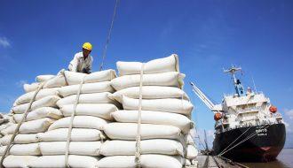 60 tấn gạo của doanh nghiệp Long Dan nhập khẩu vào Anh