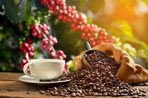 thị trường cà phê thế giới
