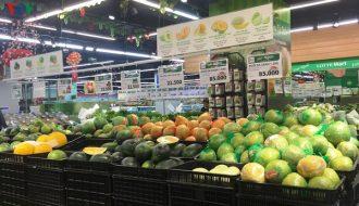 Biến động của thị trường xuất khẩu rau quả tươi qua EU