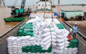 Việt Nam xuất khẩu gạo sang Anh